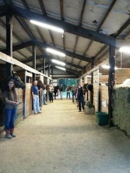 Horse Property For Sale Eugene Oregon