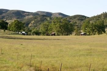 Renfrew County Recreational Property For Sale
